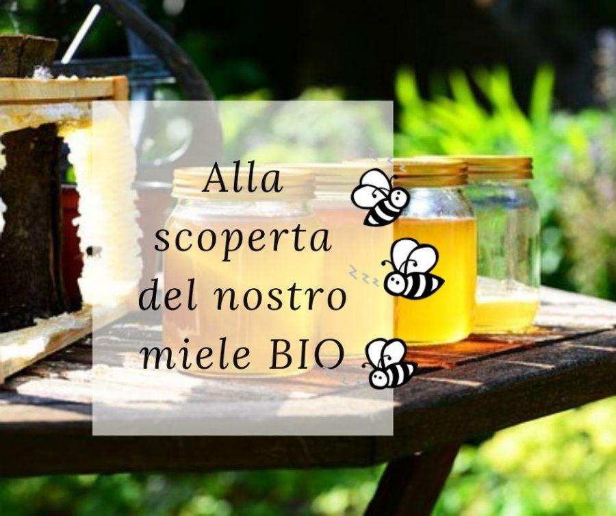 Alla scoperta del nostro miele BIO