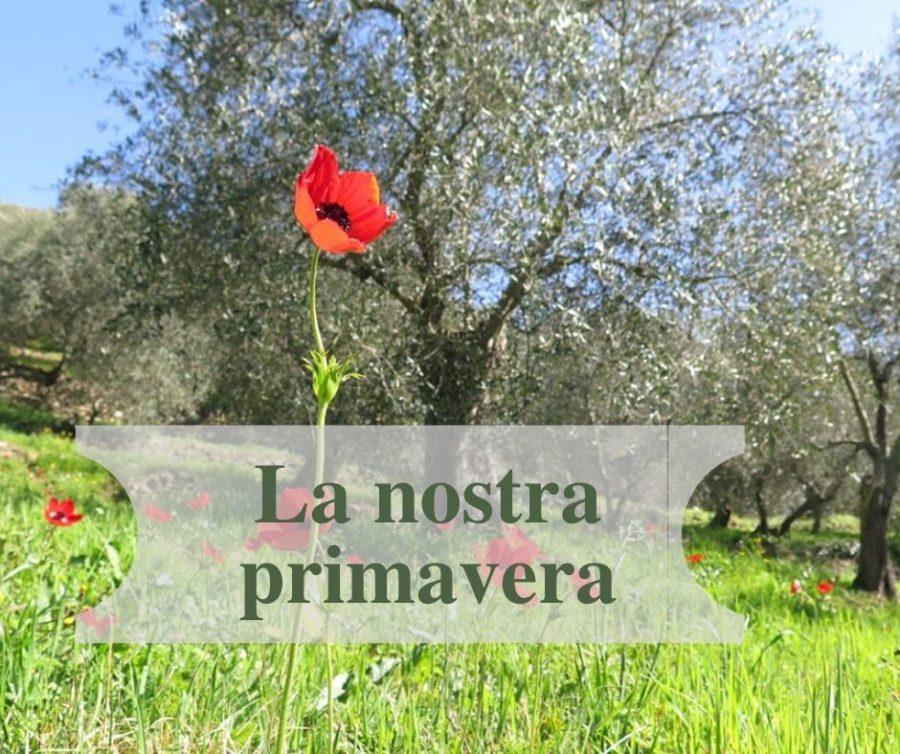 La nostra primavera
